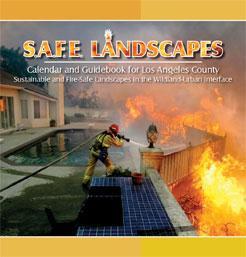 SAFE_Calendar_2009_LA-Web-s